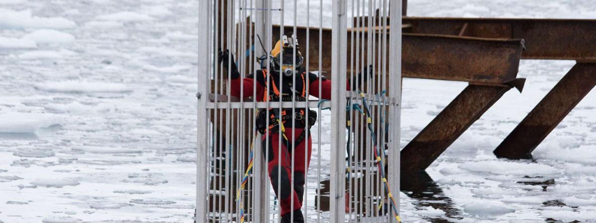 Ocean Kinetics diver in cage in Antarctica